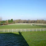 Individually Fenced Turn out Paddocks